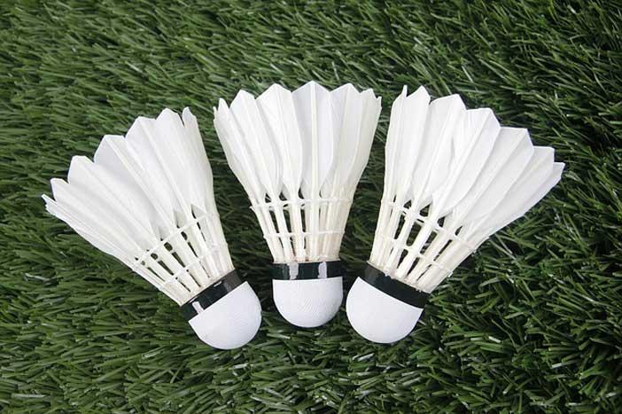Volants de Badminton